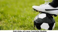 Com3456 Mobile – Trang cá cược Com3456 Mobile không bị chặn mới nhất