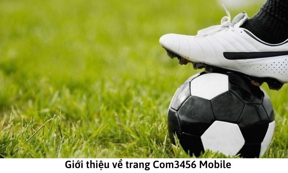 Giới thiệu về trang Com3456 Mobile