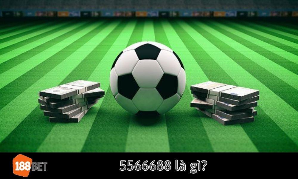 5566688 là gì_